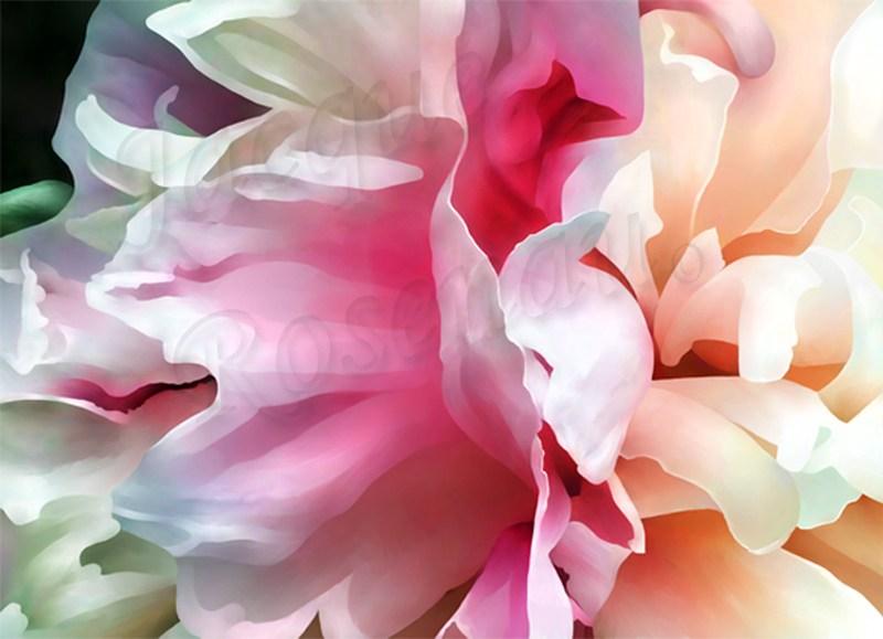 peony-pink-ruffle